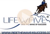 Ride the Wave of Success